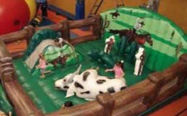 aluguel-brinquedos19
